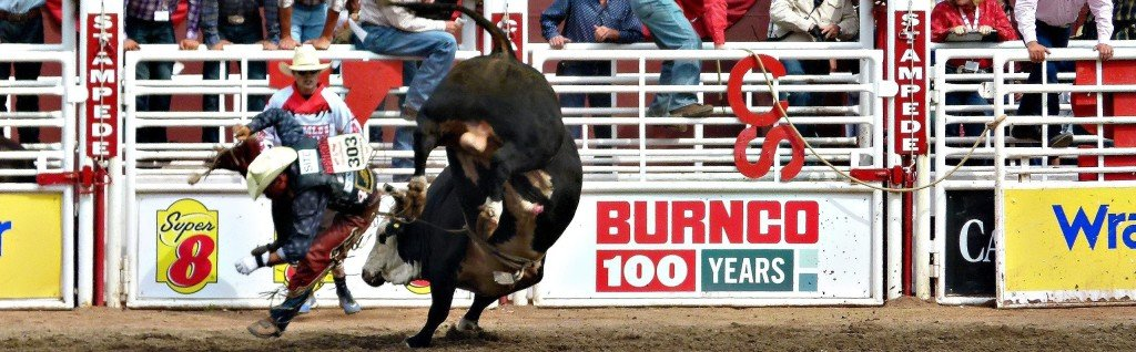 Crowd watches men fight a bull at a rodeo