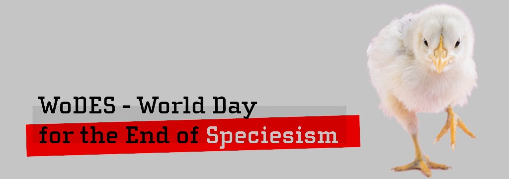 Talks for the World Day for the End of Speciesism