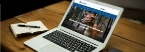 animal-ethics-new-website-design