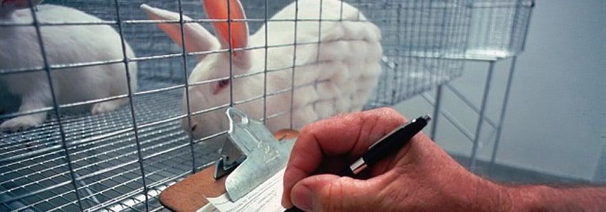 animal-experimentation-cosmetics