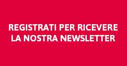 newsletter it