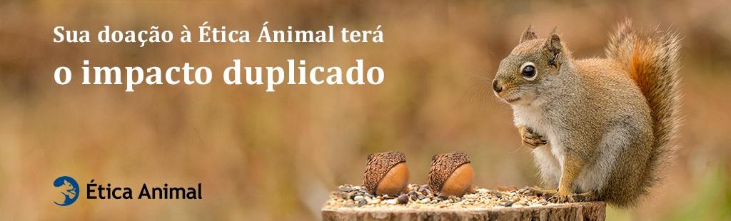 Sua doação à Ética Animal terá o impacto duplicado