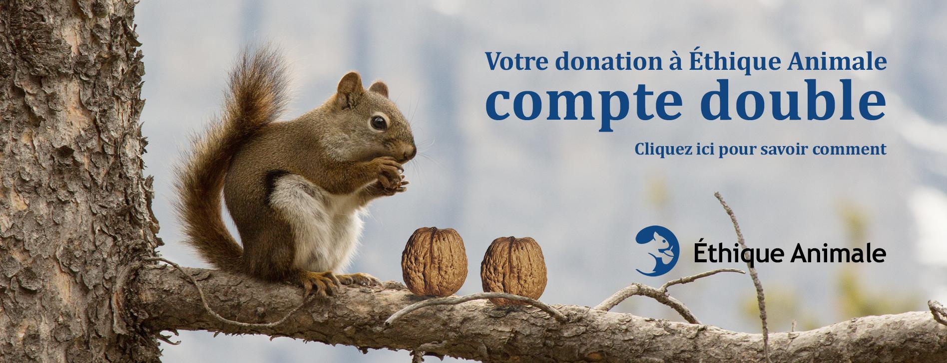 Votre donation à Éthique Animale compte double