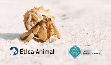 Ética Animal reconocida como organización destacada por su efectividad